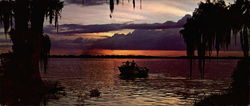 Lovely Florida Sunset Large Format Postcard