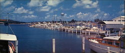Beautiful Hollywood Yacht Basin Large Format Postcard