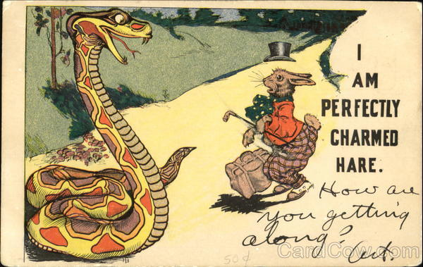 I Am Perfectly Charmed Hare Snakes & Reptiles