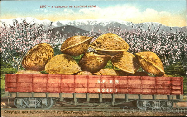A Carload Of Almonds Exaggeration