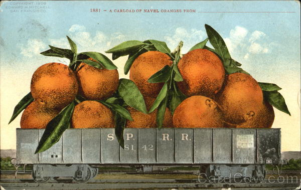 A Carload Of Navel Oranges Exaggeration