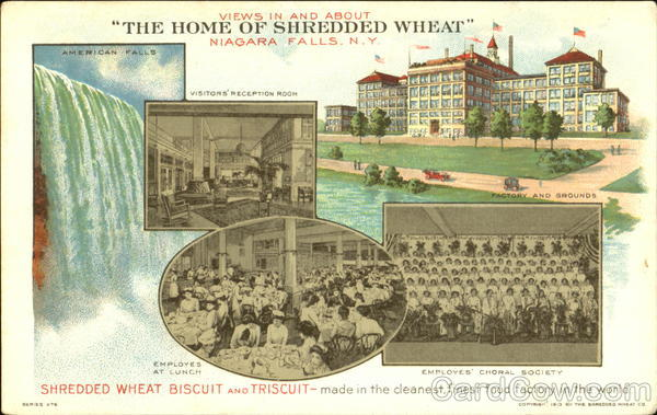 Views In And About The Home Of Shredded Wheat Niagara Falls New York