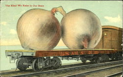 Onions on Railcar Postcard