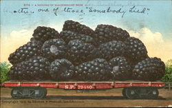 A Carload Of Blackberries From Los Angeles