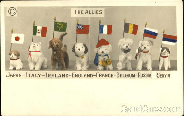 The Allies Dogs World War I