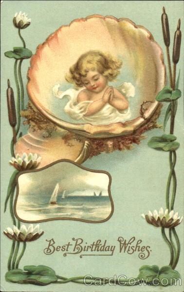 best birthday wishes seashells