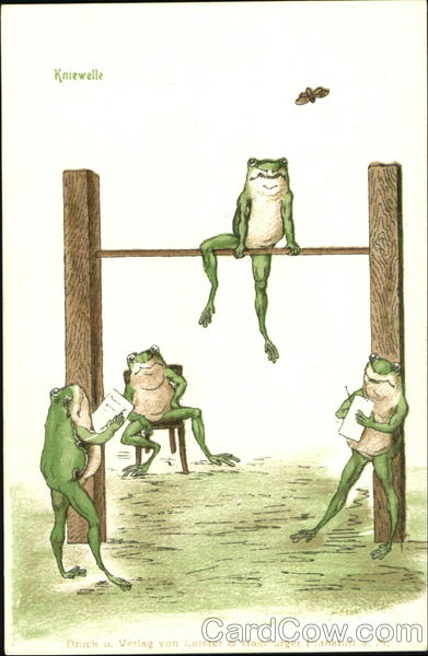 Kniewelle Frogs