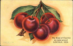 The Kind Of Cherries We Raise Around Lincoln