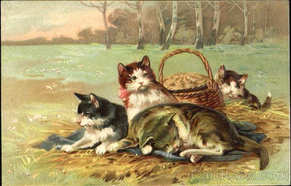 Four cats and a basket