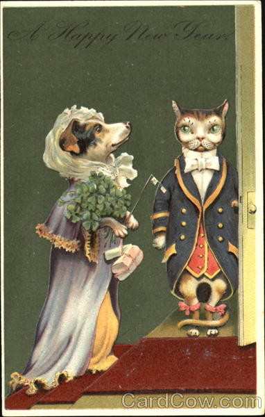 Dog and Cat Dressed as a Lady and Gentleman Dressed Animals