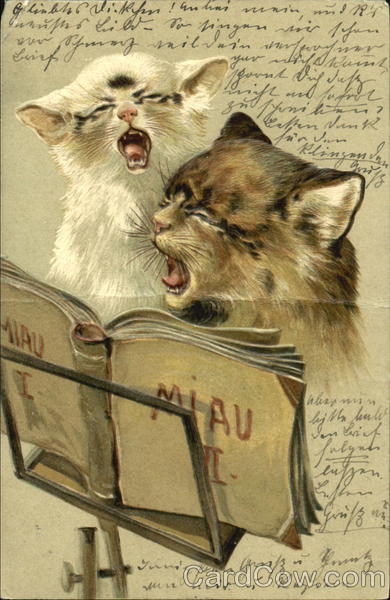pictures of kittens and cats. Two Kittens Singing Cats Music