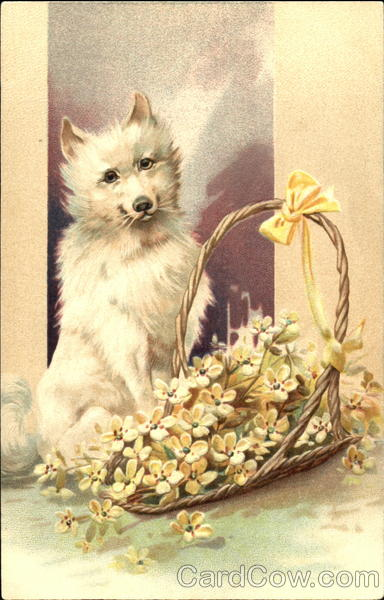 White Dog with Flowers Dogs
