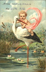 Baby riding on the back of a stork