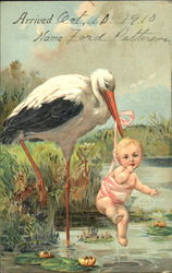 A stork carrying a baby