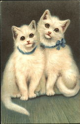 Two White Kittens With Bow