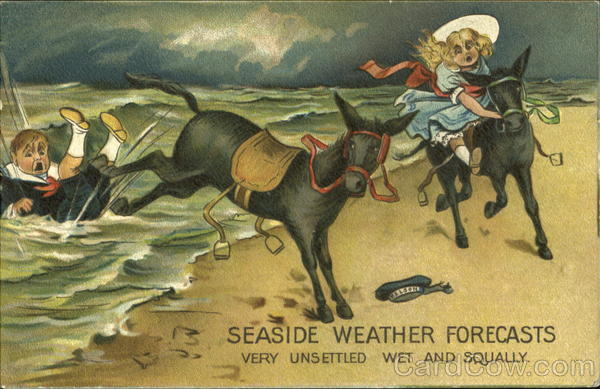 Seaside Weather Forecasts Donkeys
