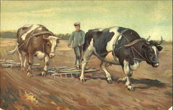 Man Plowing With Oxen