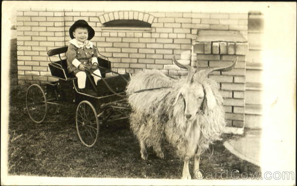 Boy riding cart pulled by long-haired goat Children