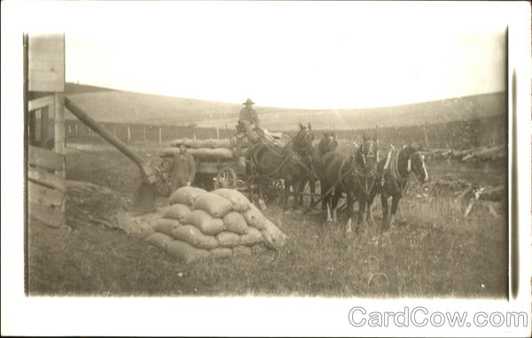 Men with Wagon Horses and Bags of Seed People