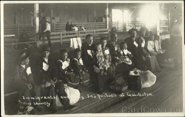 Immigrants Awarding Inspection At Galveston Texas Social History