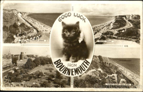 Good Luck - Kitten and Various Views Bournemouth England