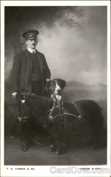 Man poses with dog and miniature pony Horses