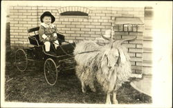 Boy riding cart pulled by long-haired goat