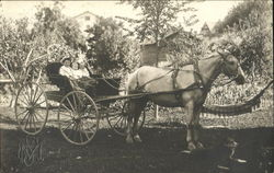 Children in Buggy pulled by Horse