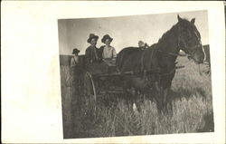 Horse pulling cart of people through field