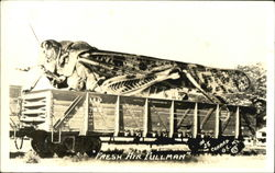 Grasshopper Fresh air pullman Postcard