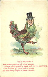 Old Rooster