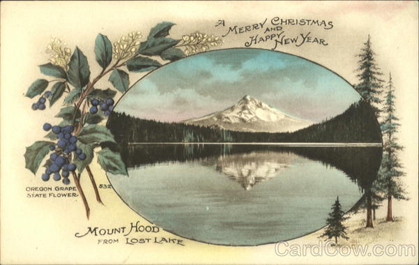 A Merry Christmas And Happy New Year Oregon