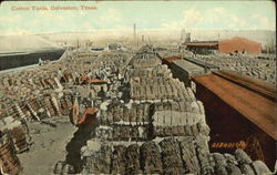 Cotton Yards