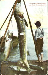 Columbia River sturgeon and royal chinook salmon