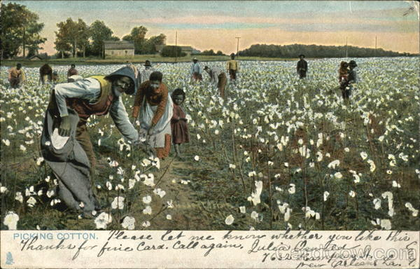 Picking Cotton Black Americana