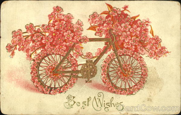 Best Wishes Bicycles