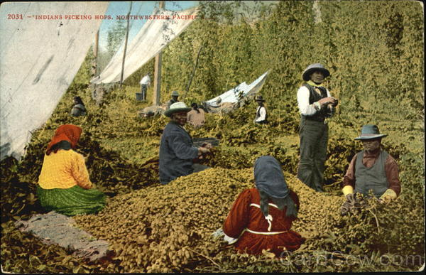 Indians Picking Hops Native Americana