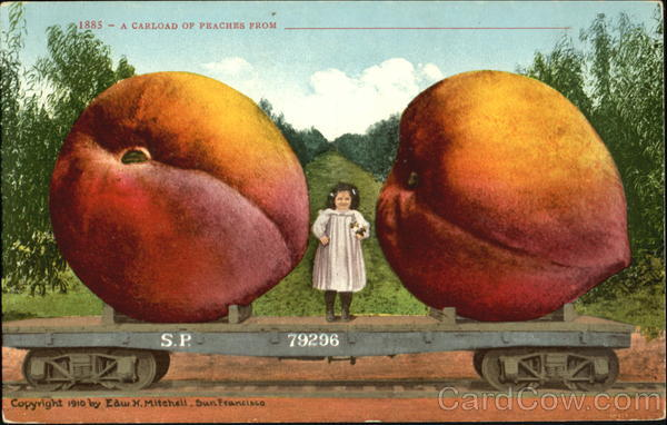A Carload Of Peaches Exaggeration