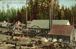 Lumber Camp And Sawmill
