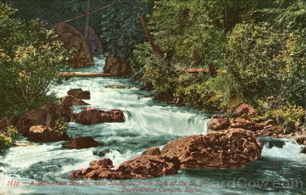 A Mountain Stream Spokane Washington