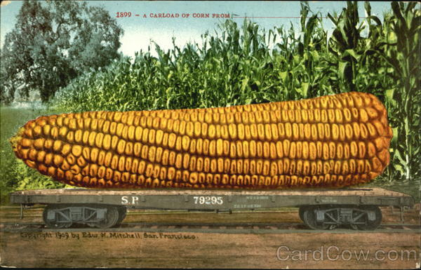 A Carload Of Corn Vegetables Exaggeration
