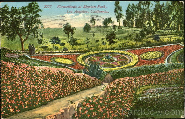 Flowerbeds At Blysian Park Los Angeles California
