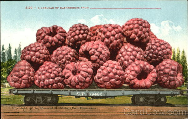 A Carload Of Raspberries Exaggeration