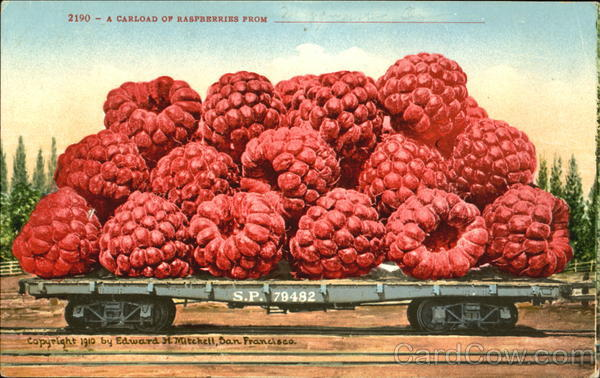 A Carload Of Raspberries Fruit
