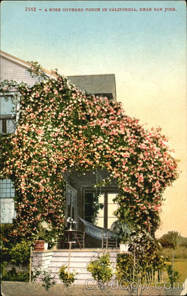 A Rose Covered Porch In California San Jose