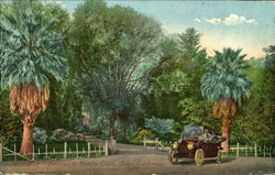 Entrance To Rancho Chico Postcard