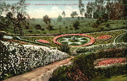 Flowerbeds At Blysian Park