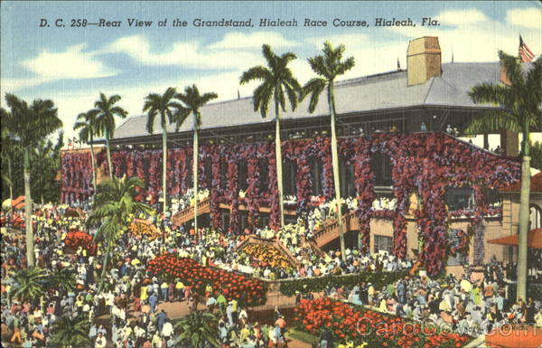 Rear View Of The Grandstand Hialeah Florida