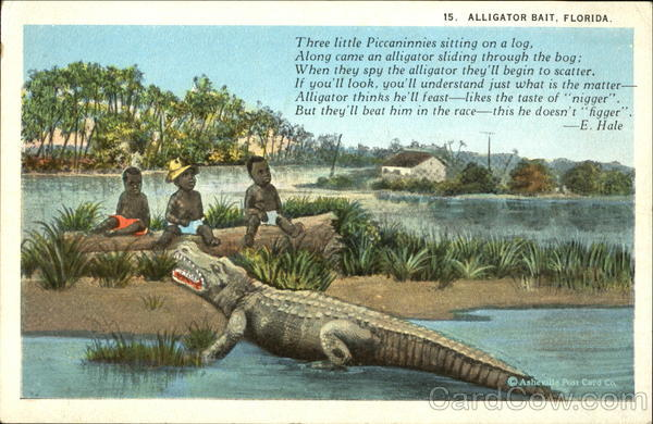 alligator bait florida