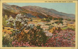 Cholla cactus and desert flowers